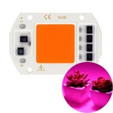 Світлодіодна фіто матриця з драйвером COB LED 50Вт 220В фітосвітлодіод