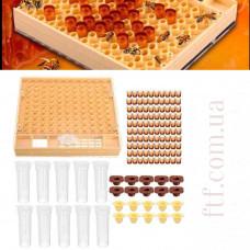 Виведення бджолиних маток Нікот система виведення бджолиних маток Nicot 110 осередків